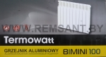 Радиатор алюминиевый TERMOWATT BIMINI 100